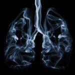 Füstbe ment szerv